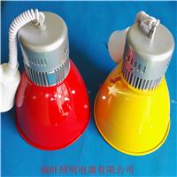 供应绿色外壳超市LED生鲜灯最低价LED生鲜灯