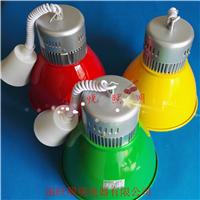 供应专利LED生鲜灯猪肉灯中山厂家30w水果灯
