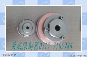 加工TL-350-2扭矩限制器/荣威机械