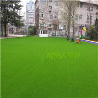 景观绿化人造草坪 休闲装饰幼儿园人工草