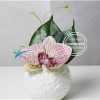 供应森海家居装饰花套装盆栽摆设假的盆栽