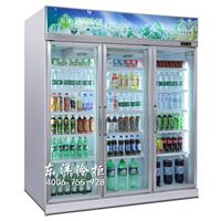 广州三门冷柜厂家