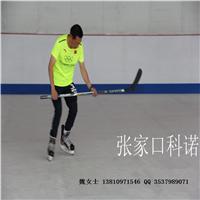 仿真冰仿真滑冰板独特设计滑行更接近真冰