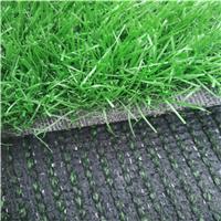 供应深绿色PE人造草 景观绿化仿真假草