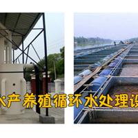循环水养殖设备|养殖循环水设备