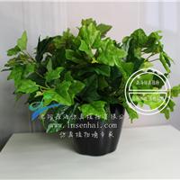 供应森海仿真五叉长青藤假植物绿植盆栽装饰