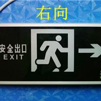 供应SW7244应急疏散标志灯