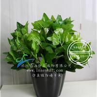 供应仿真七叉长青藤假植物绿植盆栽装饰