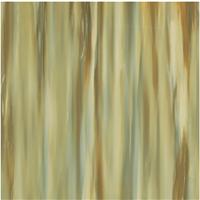 赛德斯邦木化玉苏铁玉瓷砖-CMY76080P