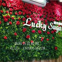 供应仿真植物墙摄影背景墙装饰玫瑰花墙