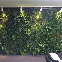 新款简约风仿真植物墙各种场合满足你的想象