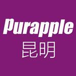 昆明紫苹果装饰工程有限公司