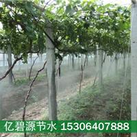 供应绵阳猕猴桃果园灌溉系统设计价钱