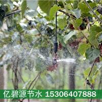 供应德阳猕猴桃果园喷灌安装视频