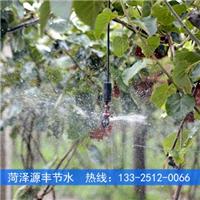 供应猕猴桃园喷灌系统设计安装示意图