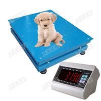 不锈钢平板宠物地磅秤