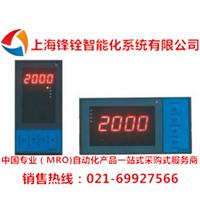 DY21Z0P22M智能数字显示仪表(东辉仪表)