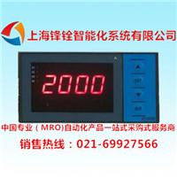 DY21M2M智能通讯数字显示仪表(东辉仪表)