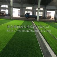 供应新型足球场人造草坪,低价批发代理
