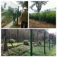 供应黄冈林业围栏武汉林业局绿化网围栏