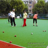 天津运动场人造草 体育足球场用草