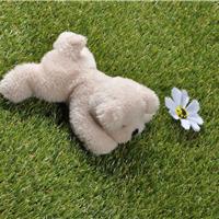 人工仿真塑料草坪 办公客厅卧室地毯批发