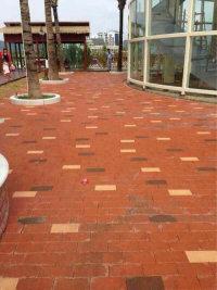 供应湖北襄阳优质陶土砖  价格便宜