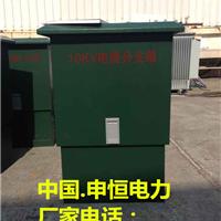 供应浙江申恒电力DFW-24高压欧式电缆分支箱