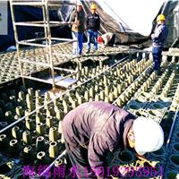 供应海绵城市建设雨水回收系统用雨水模块