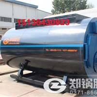 供应生物质蒸汽锅炉和燃煤蒸汽锅炉对比