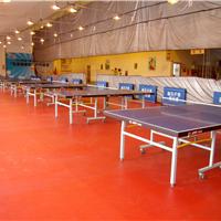 常州pvc学校体育馆运动场所专用地板