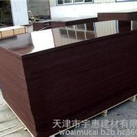 天津建筑工地多层板