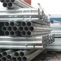供应迈克牌镀锌钢塑管深圳厂家直销零售批发