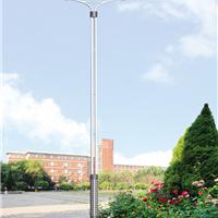 LED路灯,深圳路灯杆灯柱,可来图定做。