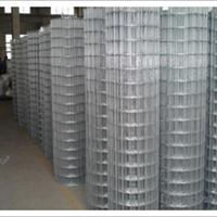 5*7.5cm网孔圈玉米铁丝网大量现货批发价格