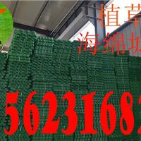 供应天津北植草格生产厂家