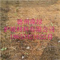 供应环保椰丝植草毯 抗冲环保植草毯供应商