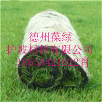 供应环保植草毯  椰丝植被毯生态草毯