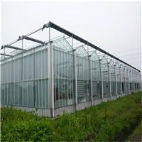 供应PC多层防结雾阳光板 温室大棚整体造价