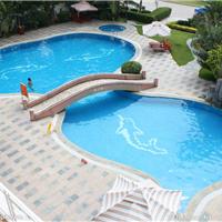法国戴高乐 专业供应游泳池水处理设备