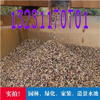供应天然鹅卵石,机制鹅卵石,鹅卵石批发