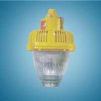 供应BPC8760-L24 LED防爆平台灯