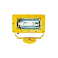 供应BFC8100-J250防爆外场强光泛光灯