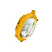 供应BFC8120-J100内场强光防爆灯