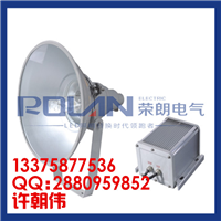 供应ZL8804节能防震灯 金卤灯250w400w价格