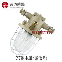 供应 DGS20/127Y矿用隔爆型荧光灯20W荧光灯