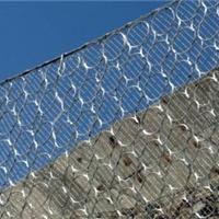 供应RXI100型被动防护网各个型号定做