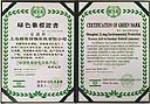 绿色徽标证书