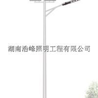 永州新农6米村led风光互补路灯厂家批发