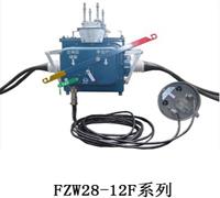 供应FZW28-12F真空负荷分界开关